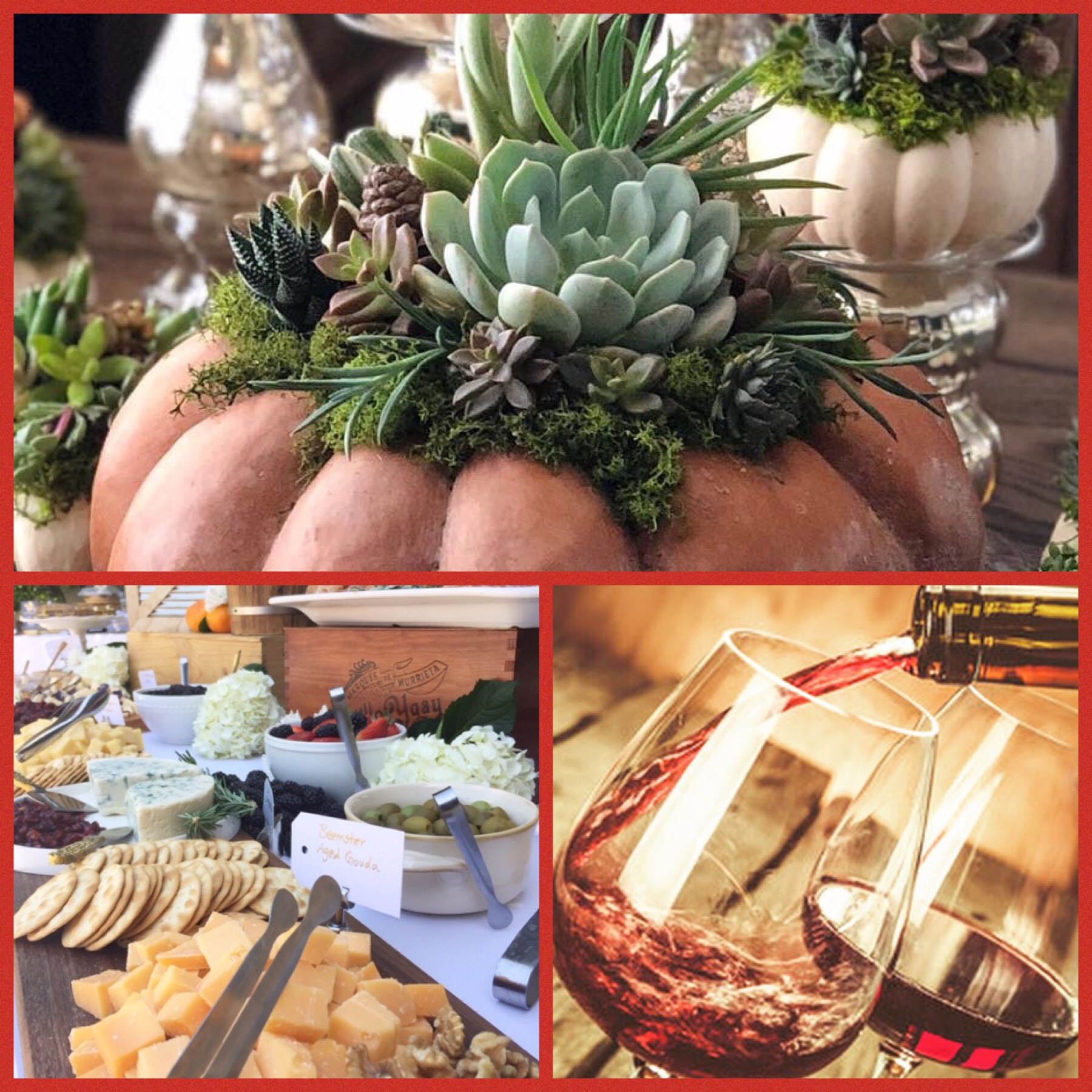 Wine, Cheese and Charcuterie, and Pumpkin Succulents